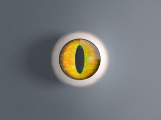 3d render cat eyeball