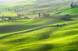 Atmosphere green spring in a landscape of Tuscany, Italy