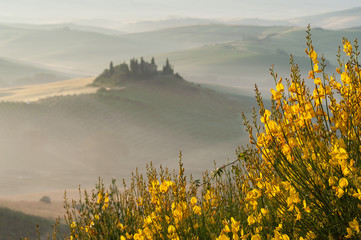 The mysterious fog surrounding Tuscan house and fields, Italy