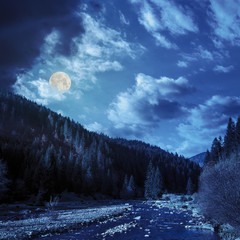 forest river in mountains with stones at night