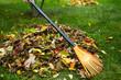 Fall leaves with rake - 73695228