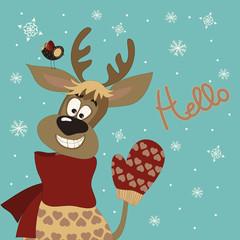 Reindeer says hello