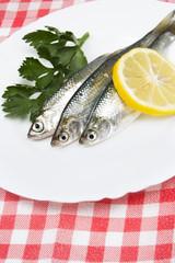 fresh sardines with lemon.