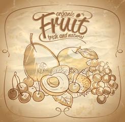 Organic fruit hand drawn illustration.
