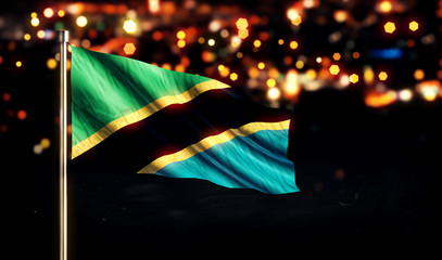 Tanzania National Flag City Light Night Bokeh Background 3D