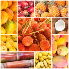 fruits tropicaux exotiques