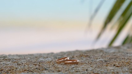 Two Wedding Rings on the Beach at Seaside. Honeymoon.