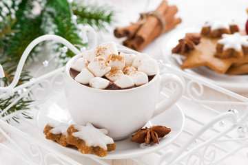 spicy hot chocolate with marshmallows