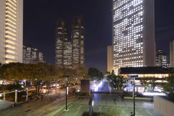 東京都庁と新宿高層ビル群  夜景