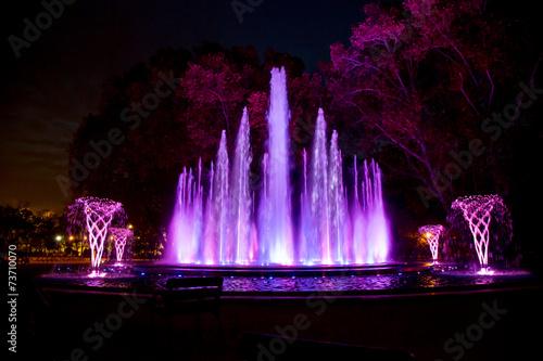 Music fountain Margaret Island - 73710070