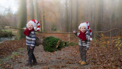 kinderen hebben een kerstboom gevonden