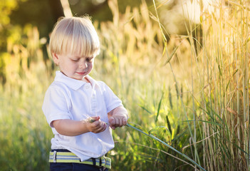 Little boy playing in the field