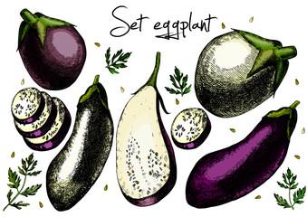 Set of eggplant.