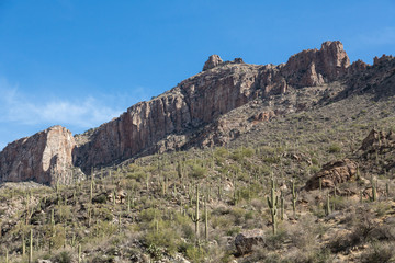 Arizona's Sabino Canyon