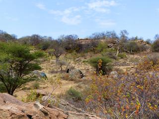 Landschaft nahe Gorofani Mangola Tansania Afrika