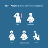H5N1 Avian flu symptoms poster