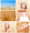Collection of photos wheat field and little girl