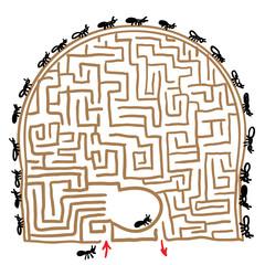 labyrinth anthill. vector illustration
