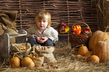 Little boy with pumpkins in hay on rustic background