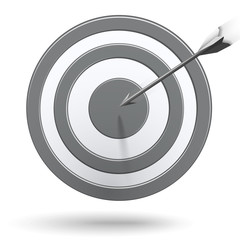 Arrows hitting the center of the grey target