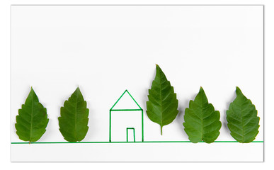 Leaves with painted house on white paper
