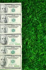 Lot of one hundred dollar bills  on grass