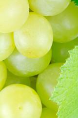 grains de raisin blanc sur grappe