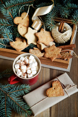 Сocoa with marshmallows and gingerbread on wooden background
