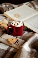 Cocoa with marshmallows on a plaid blanket