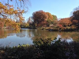 squarcio d'autunno