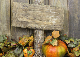 Blank rustic wood sign with fall foliage and pumpkins