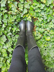 Con gli stivali di gomma fra l'edera