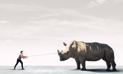 Man and rhino