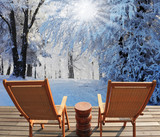 The December winter sun