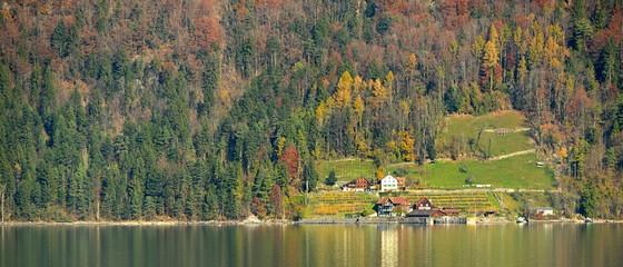 automne sur le walensee