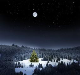 Weihnachtsbaum in Winterlandschaft bei Nacht
