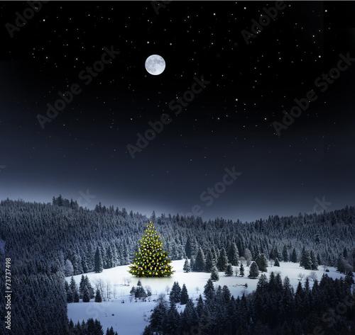 Weihnachtsbaum in Winterlandschaft bei Nacht - 73737498