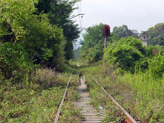 Single-track railroad amongst tropical vegetation
