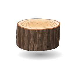 Cross section of tree stump, vector illustration