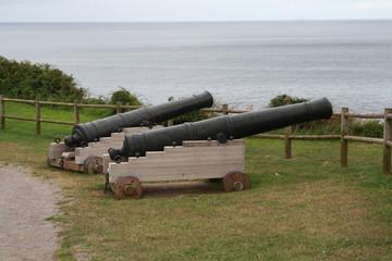 Cañones del Año 1739