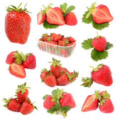 strawberries on a white background