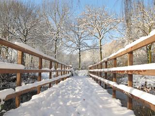 Winter landscape with a wooden bridge.
