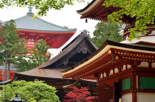 Tuinposter Japan Pagodas of Mount Koya