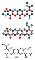 Gentamicin antibiotic drug (aminoglycoside class) molecule.