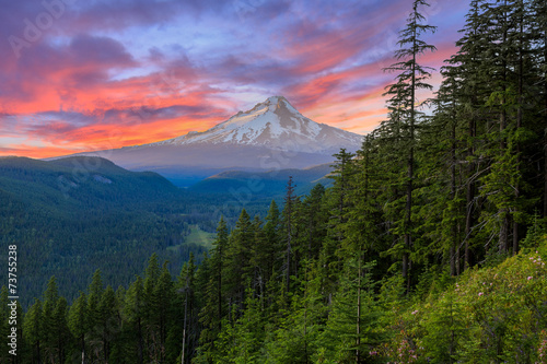 Beautiful Vista of Mount Hood in Oregon, USA. © Josemaria Toscano