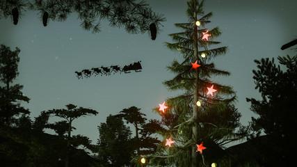 pine christmas