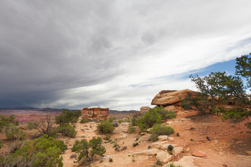 UT-Canyonlands National Park-The Maze road to-Dollhouse