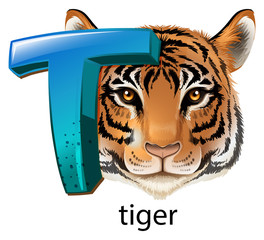 A letter T for tiger