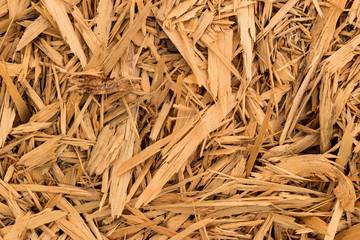 Wood Shaving Bits