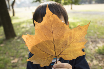 Boy to hide his face with fallen leaves